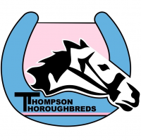 Thompson Thoroughbreds Australia
