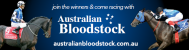 Australian Bloodstock Syndicates