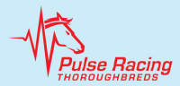 Pulse Racing Thoroughbreds