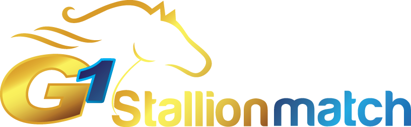 Goldmine Stallion Match