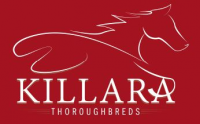 Killara Thoroughbreds