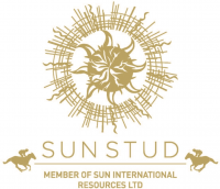 Sun Stud International