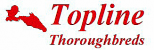 Topline Thoroughbreds Pty Ltd