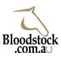 Ex-Rockhampton trainer chases city success - Bloodstock.com.au